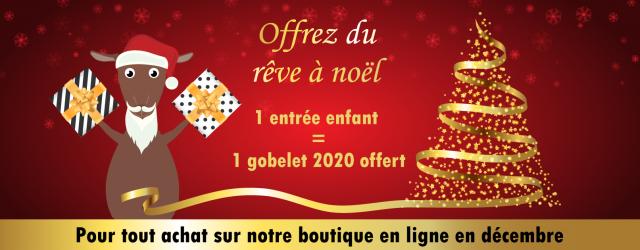 Noel_2019-parc_de_loisirs-attractions-sortie_familles-enfants-cadeaux-au_pays_des_carrioles