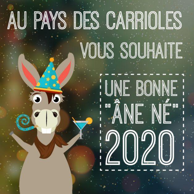 annee-nouvelle_annee-bonne_annee-jeux-parcdactivitesenfants-2020-parcdeloisirs-parcenfants-aupaysdescarrioles-la_boissiere