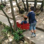 jeux enfants sans reservation parc de loisirs famille enfant ado adultes pleine nature pousse autos
